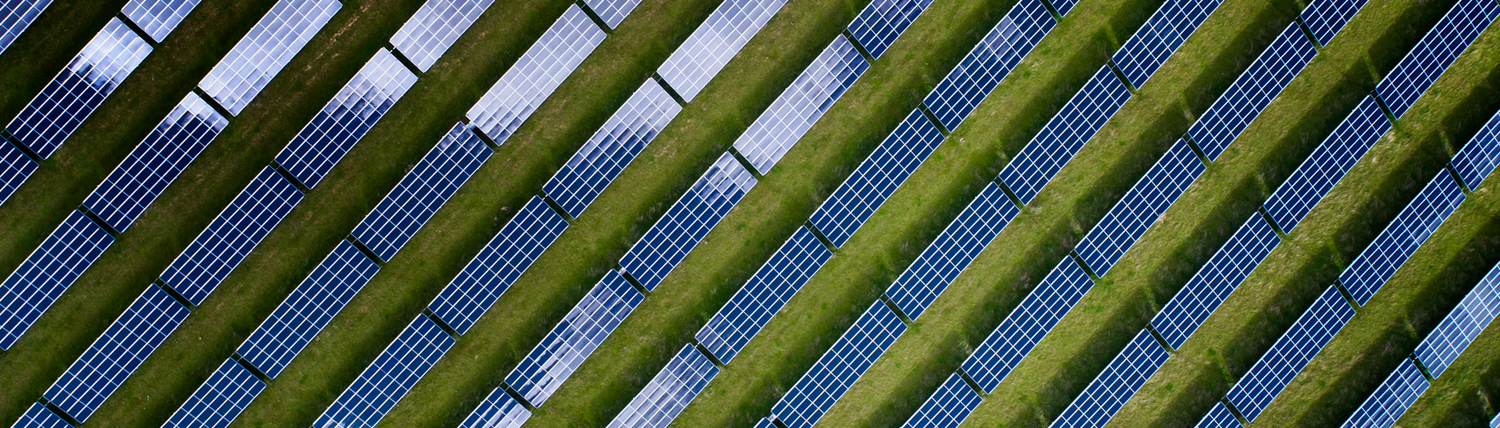 Solar panels viewed from above